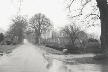 Afbeelding bij Jan van Almelo