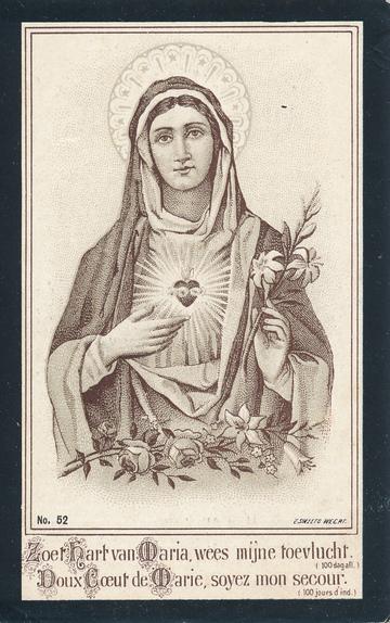 Theodora van den Hoven