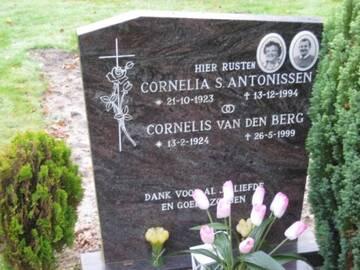 Afbeelding bij Cornelis van den  Berg